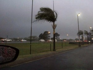 Storm and Wind Gusts up to 65kph