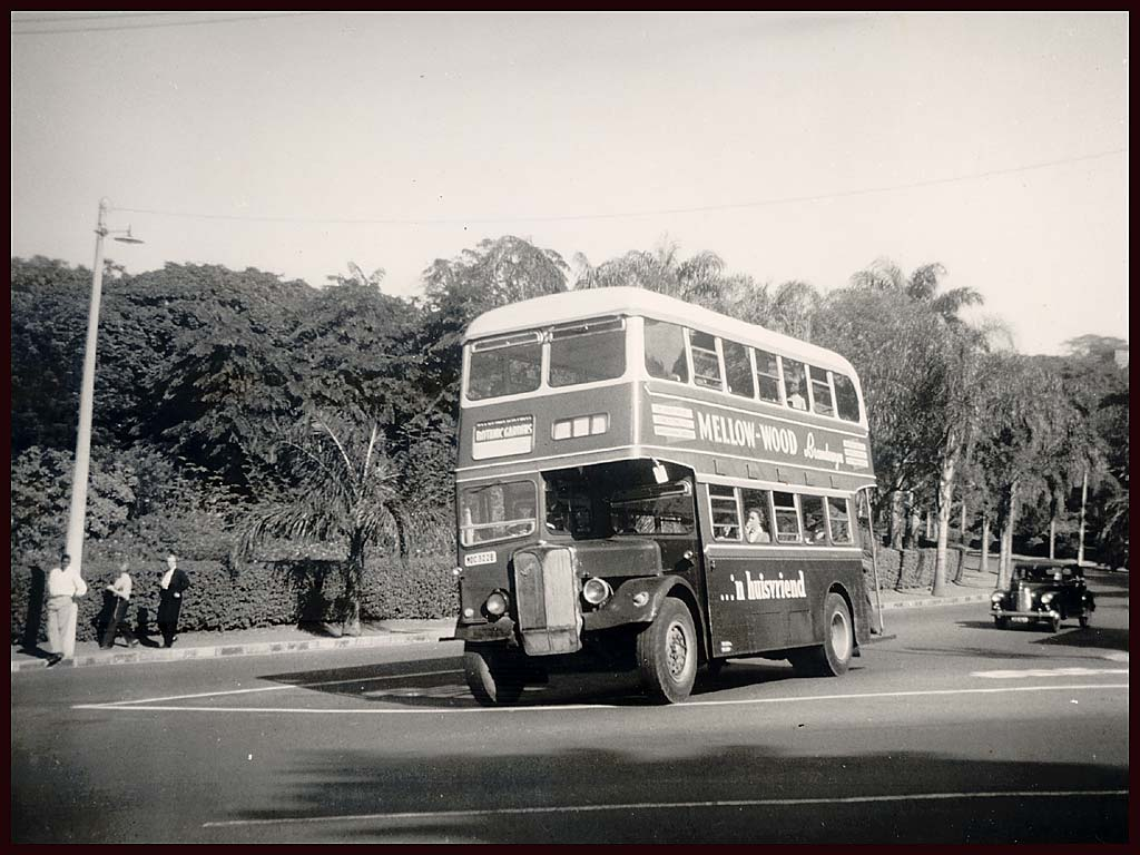 Transport In Durban An Incredible History Explore
