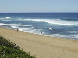 Hibuscus Coast KwaZulu Natal