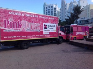 Wakaberry And The PinkDrive