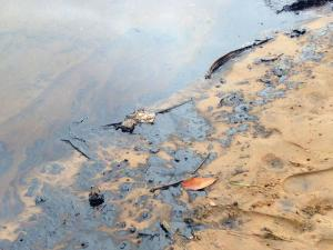 The Oil-Spill At The Silt Canal (pictured sourced from www.iol.co.za)