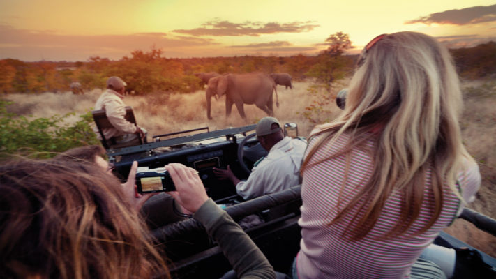 1st Zulu Safaris