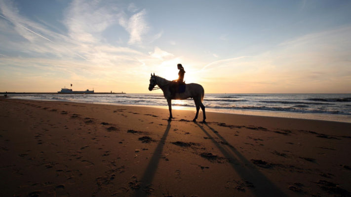 Horseback Beach Adventures